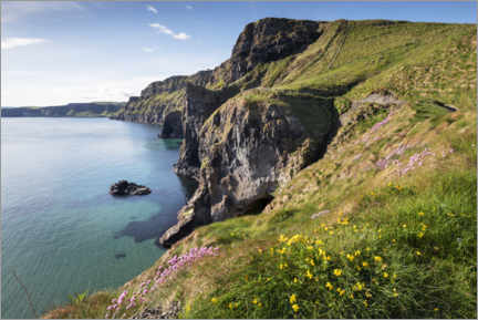 Holzbild  Ruhige Bucht in Irland am Meer - The Wandering Soul