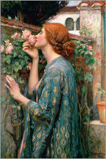 Wandsticker  Die Seele der Rose - John William Waterhouse