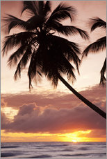 Gallery Print  Tropical sunset, Bridgetown, Barbados, West Indies, Caribbean, Central America - Angelo Cavalli