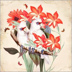 Gallery Print  Oh My Parrot XI - Mandy Reinmuth