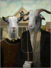 Poster  American Goat - Philippe Tyberghien