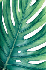 Acrylglasbild  GRÜNE MONSTERA - Art Couture