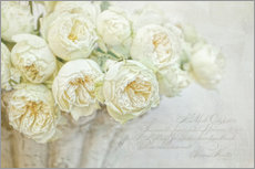 Wandsticker  white roses - Lizzy Pe