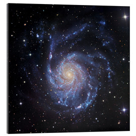 Acrylglasbild  M101, die Spiralgaxie in Ursa Major - Robert Gendler
