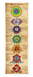 Poster  Elements of Chakras (engl. Text) - Sharma Satyakam