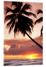 Acrylglasbild  Tropical sunset, Bridgetown, Barbados, West Indies, Caribbean, Central America - Angelo Cavalli
