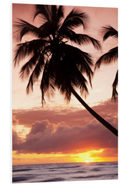 Hartschaumbild  Tropical sunset, Bridgetown, Barbados, West Indies, Caribbean, Central America - Angelo Cavalli