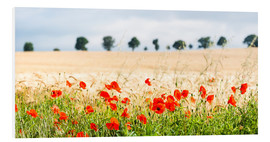 Hartschaumbild  Mohn am Feldrand - Matthew Williams-Ellis
