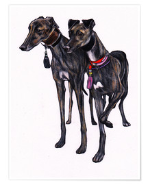 Premium-Poster  Brindle Windhunde - Jim Griffiths