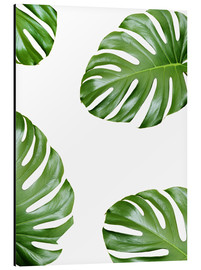 Alubild  Angriff der Monstera - Finlay and Noa