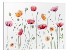 Alubild  Mohn-Party - Mandy Disher