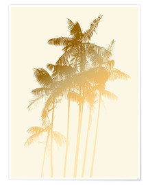 Poster  palmstobacco cream3x4ratio - Alex Saberi