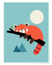 Premium-Poster  Panda-Nickerchen - Andy Westface