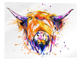 Acrylglasbild  Scottish Highland Cow - Zaira Dzhaubaeva