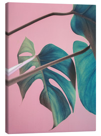 Leinwandbild  Sweet pink monstera leaves - Emanuela Carratoni