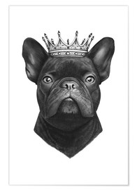 Premium-Poster The French Bulldog king
