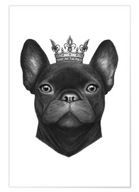 Premium-Poster Queen French Bulldog