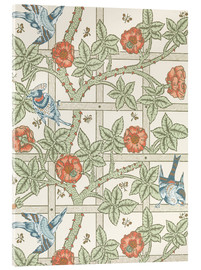 Acrylglasbild  Gitter - William Morris