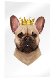 Acrylglasbild  King French Bulldog - Valeriya Korenkova
