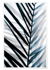 Premium-Poster Palm Leaves 18