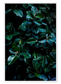 Premium-Poster Dark Leaves 4